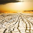 sunset on the dried ground