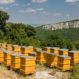 big-hive