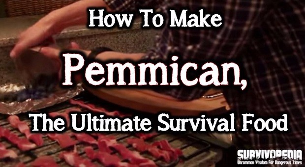 Survivopedia: How to make pemmican