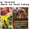 BIG-Survivopedia-Review