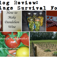 Survivopedia Survival Food