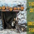 Wood and stone underground shelter
