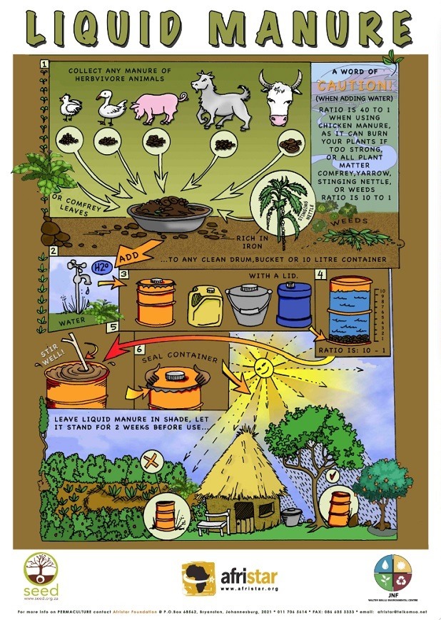 cow and pig manures Hot composting cow manure before using it as a fertilizer also kills off potentially harmful pests and diseases in the manure  pig manure would need to be .