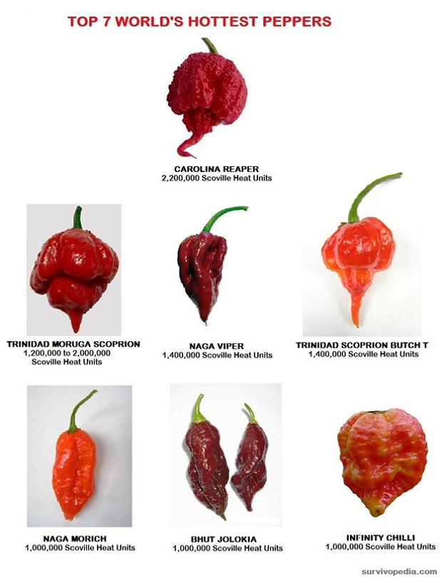 Hot Peppers Chart
