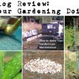 Prep Blog Review 20 June