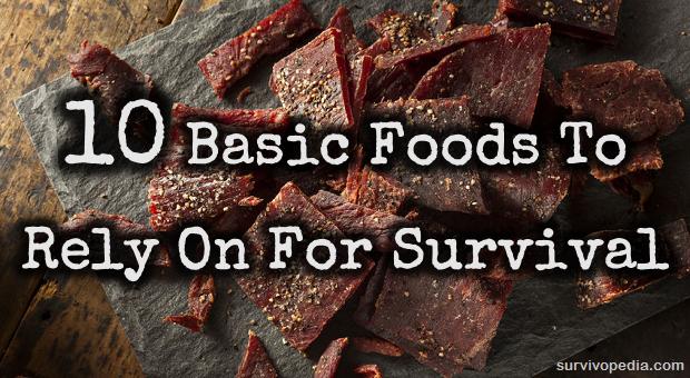 Jerky survival food