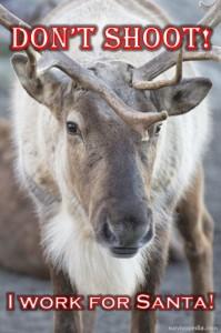 survivopedia santa deer