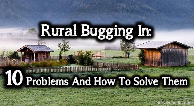 rural bug in