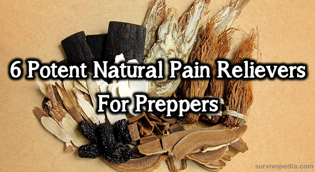 6 Potent Natural Pain Relievers