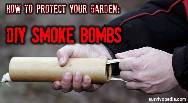DIY SMOKE BOMBS