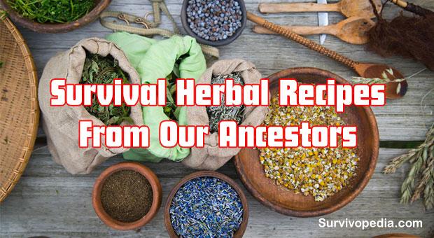 Herbs Recipes
