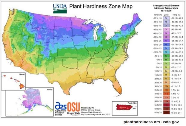plant hardiness zone map - Copy