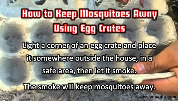 egg crates agains mosquitoes