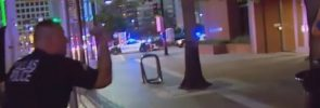 survivopedia dallas shooting