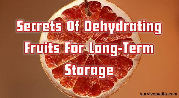 Secrets Of Dehydrating Fruits For Long-Term Storage