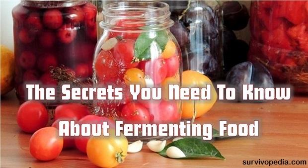 Survivopedia-secrets of fermenting food