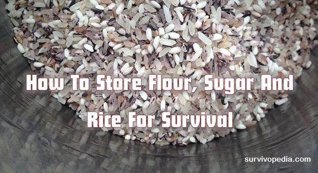 Survivopedia-store-rice
