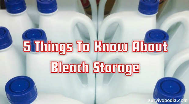 5-things-to-know-about-bleach-storage