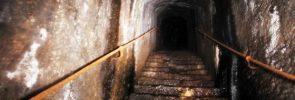 leaky-cellar