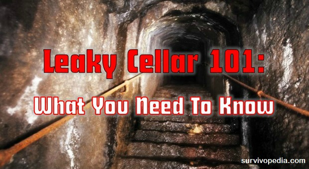 Leaky Cellar