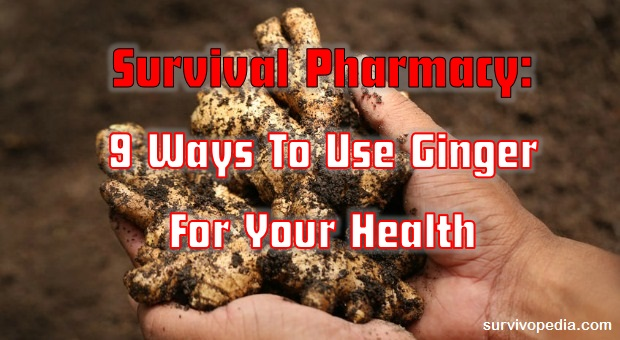 How To Use Ginger For Your Health