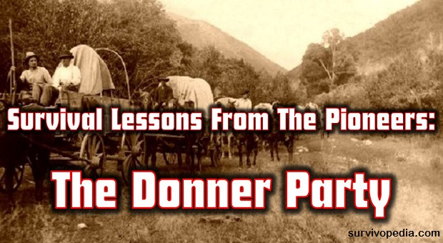 The survival of the donner party essay