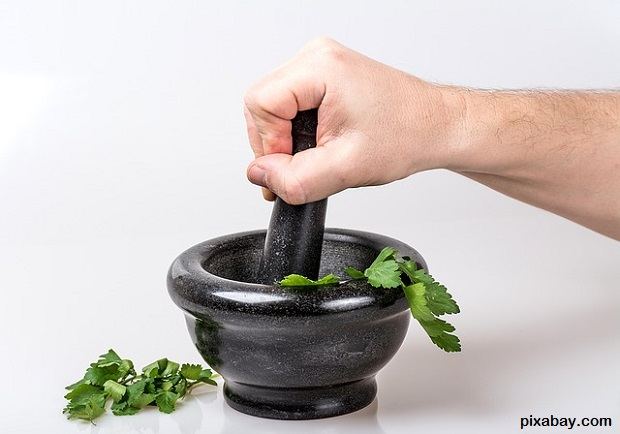 poultice Survival Herbal Recipes